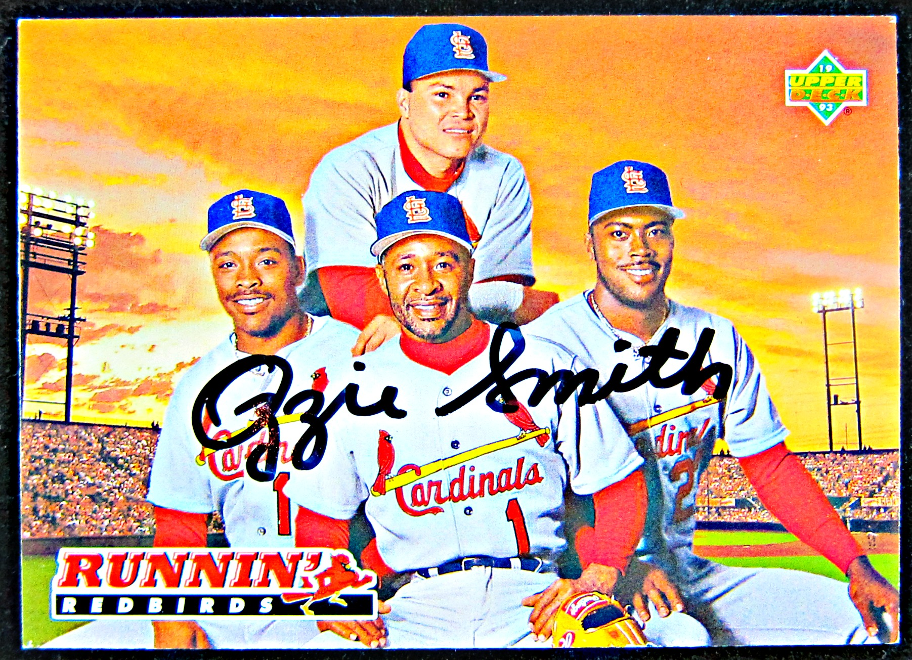 wholesale dealer b7848 bdbb3 Ozzie Smith Autographed Card