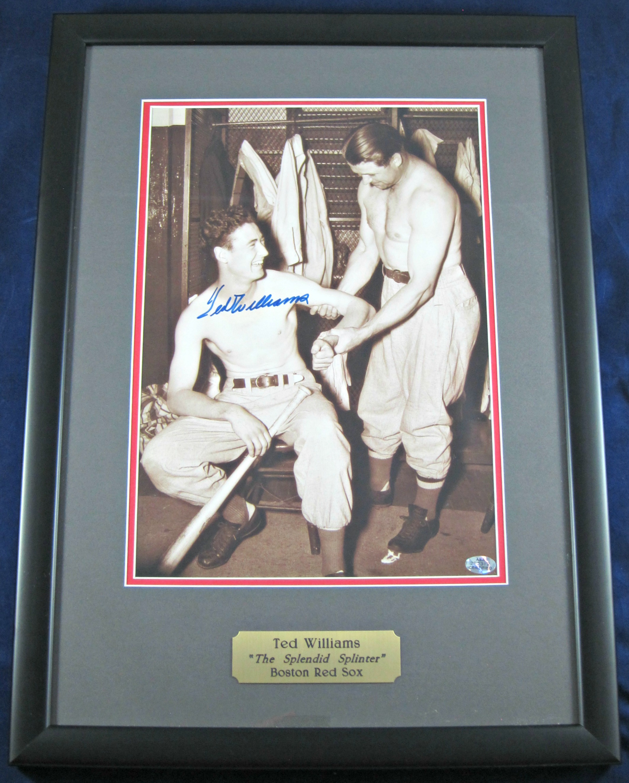 Ted Williams Autographed Display